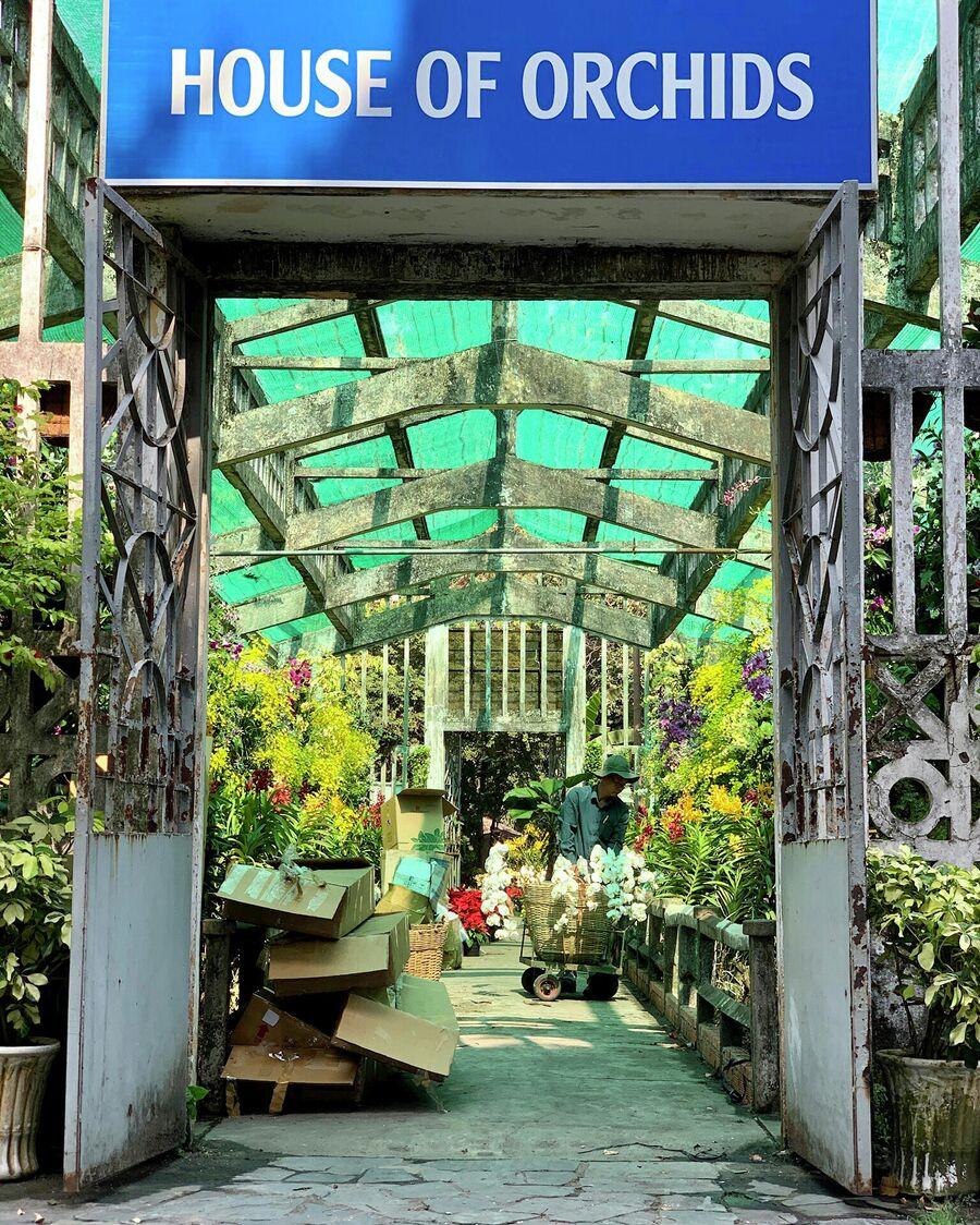 Работник в ботаническом саду Хошимина