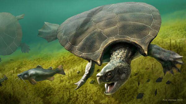 Древняя гигантская черепаха с рогатым панцирем найдена в Венесуэле