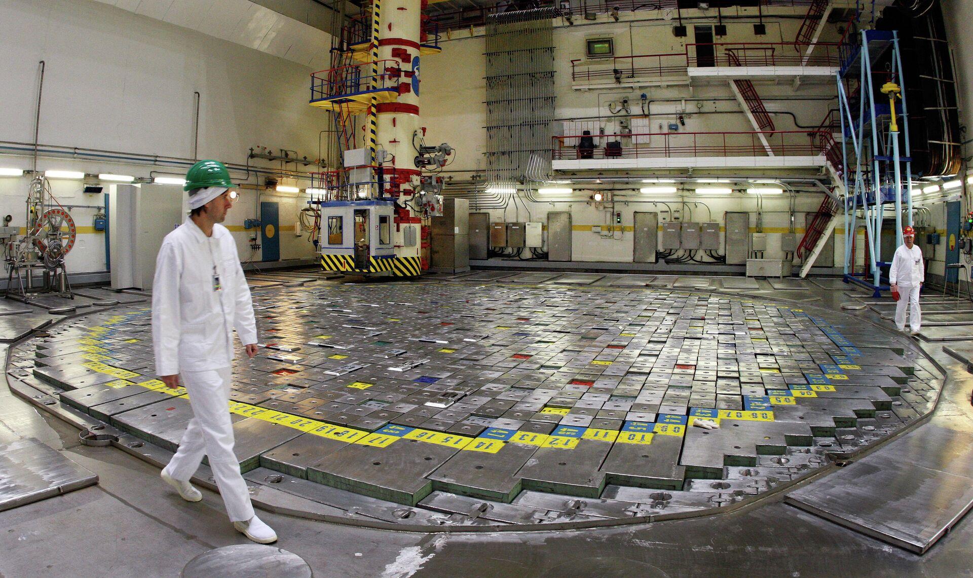 Сотрудники Игналинской АЭС в реакторный зале. 2009 год - РИА Новости, 1920, 30.04.2021