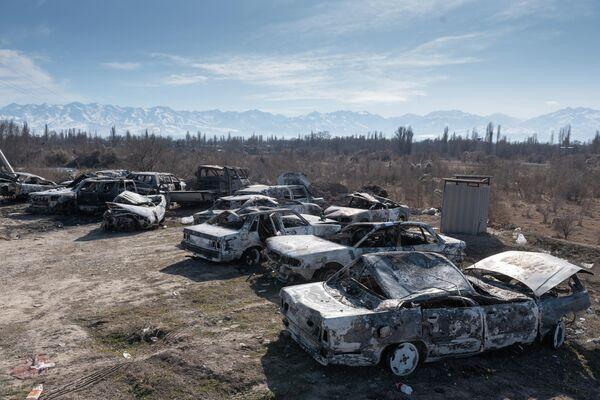 Автомобили, сожженные во время массовых беспорядков в Кордайском районе Жамбылской области Казахастана, вывезенные за пределы села Сортобе