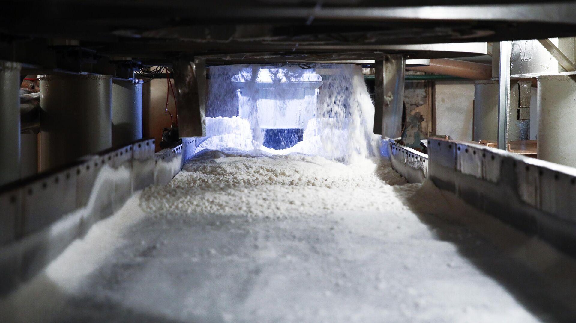 В Тольятти открылся крупнейший в Европе завод металлических дверей