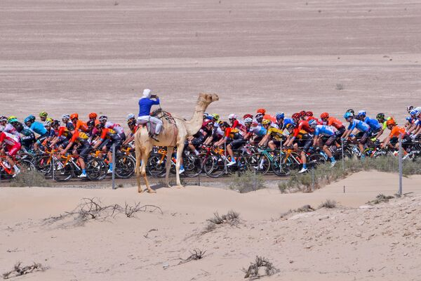 Участники велогонки  Тур Объединённых Арабских Эмиратов