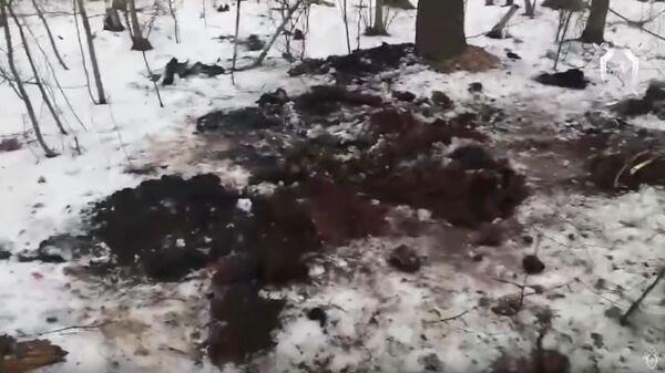 Кадр из видео с места обнаружения тела по Рязанью, предположительно Екатерины Левченко, знакомой фигурантов дела Сети
