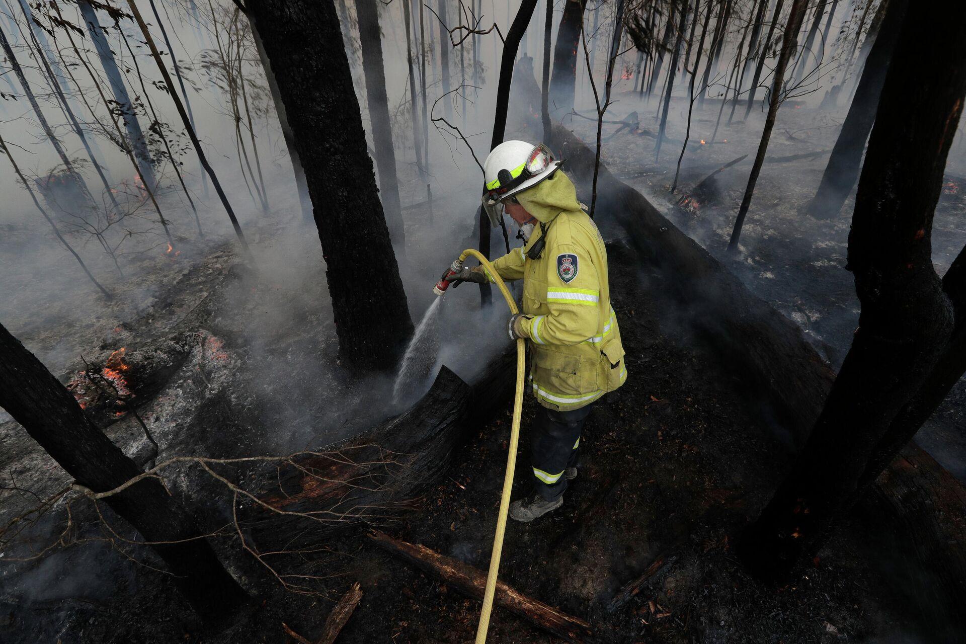 Пожарный среди сгоревшего леса в Австралии - РИА Новости, 1920, 22.12.2020