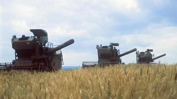Комбайны на поле совхоза Дмитровский в Якутии.