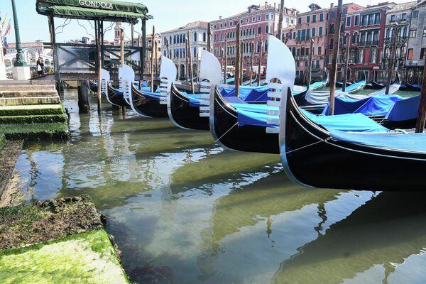 Гондолы в Большом канале Венеции