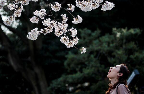 Посетитель в парке Уэно в Токио
