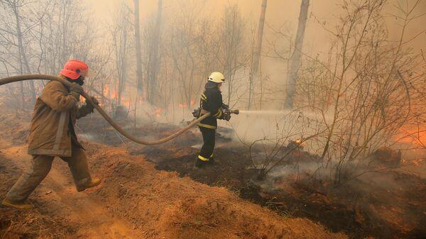 Сотрудники пожарной охраны во время тушения пожара на территории зоны отчуждения Чернобыльской АЭС