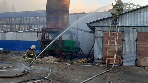 Пожар на пилораме в Новгородской области