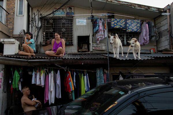 Девушки со своими собаками на крыше своего дома в Маниле, Филиппины. 21 апреля 2020 года
