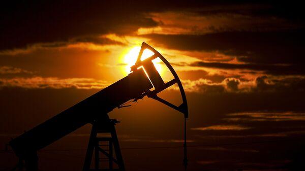Экспорт нефти из России в США упал в апреле более чем в 12 раз