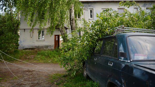Поваленное дерево и порванная линия электропередачи в результате ураганного ветра в Свердловской области