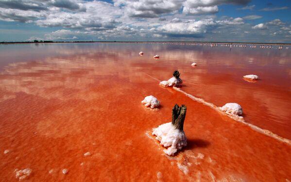 Озеро Сасык-Сиваш под Евпаторией