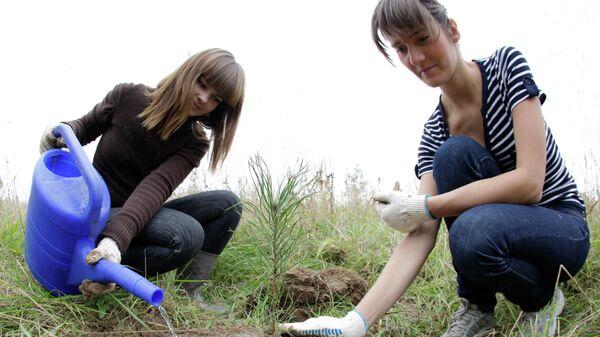 Девушки сажают дерево