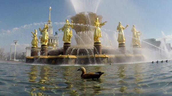 Фонтан Дружба народов на ВДНХ в Москве
