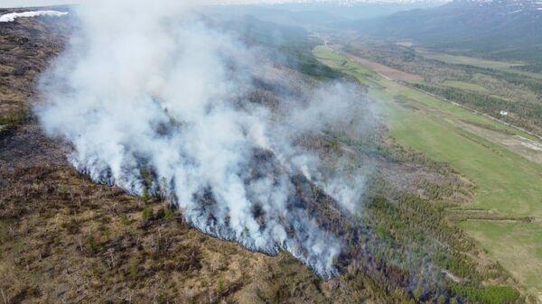 Лесной пожар в Камчатском крае
