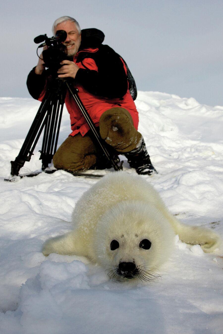 Дмитрий Крылов на Белом море
