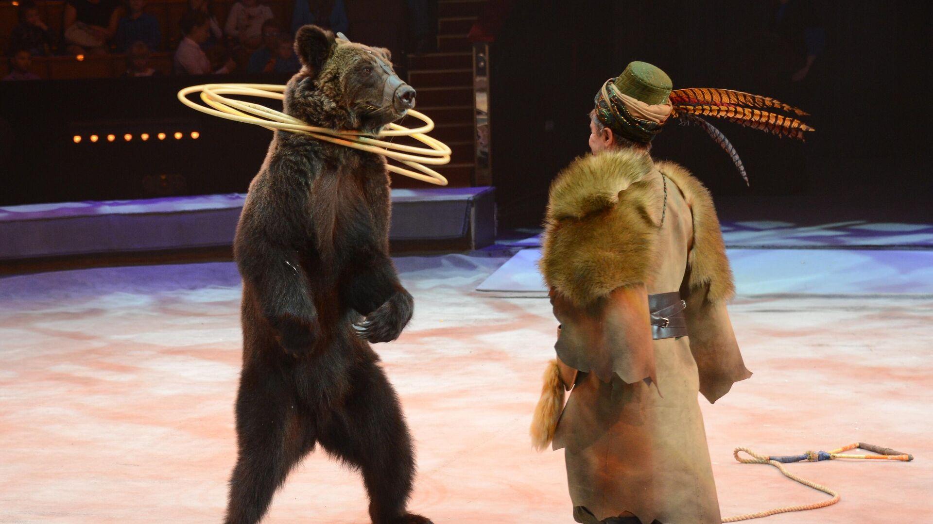 Премьера нового шоу Цирка братьев Запашных - РИА Новости, 1920, 11.01.2021
