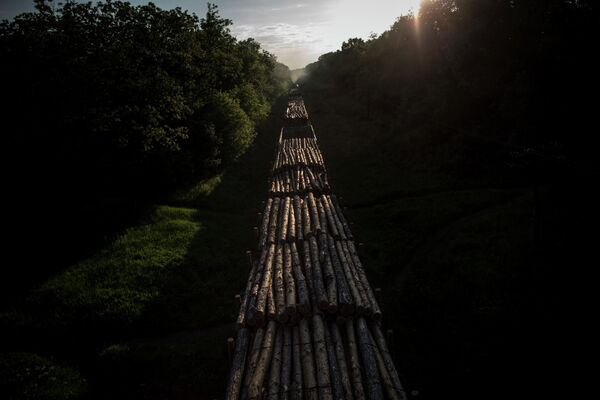 Перевозка лесоматериалов на Украине