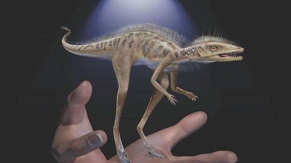 Восстановленный облик рептилии Kongonaphon kely