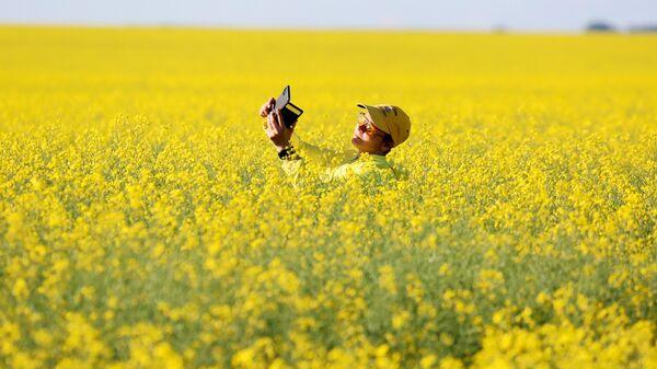 Женщина фотографируется на рапсовом поле в Красноярском крае