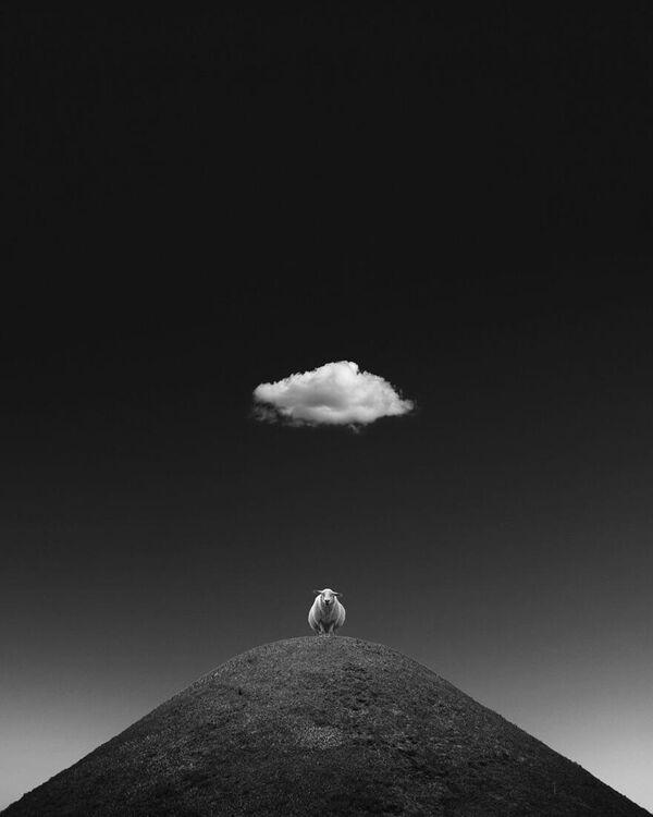 Kathrin Federer. Работа участника конкурса Minimalist Photographer Of The Year 2020