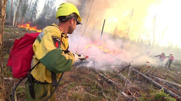 Сотрудники Авиалесоохраны проводят противопожарные мероприятия для препятствия распространения лесных пожаров в Красноярском крае. Стоп-кадр видео