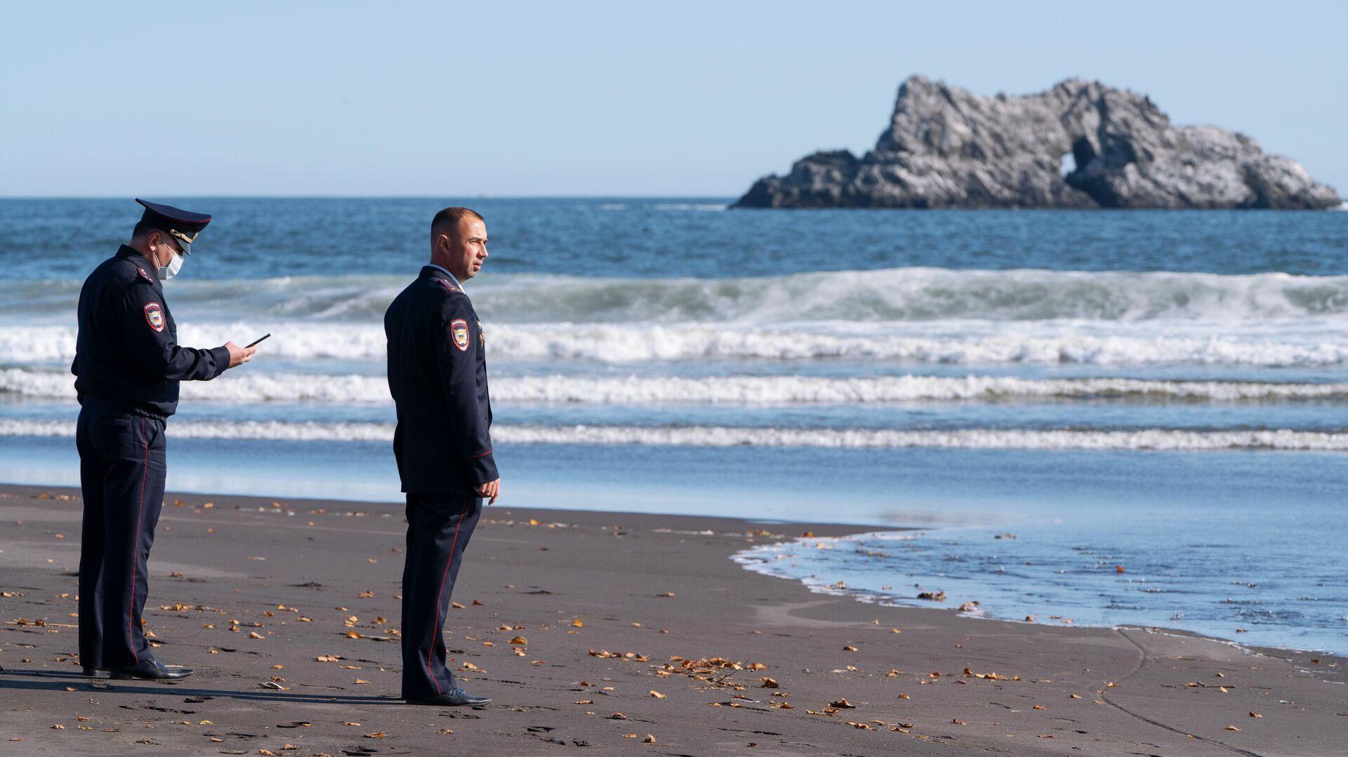 1578147659 0:216:3190:2010 1920x0 80 0 0 e142b0ea786355447ae1396d73b390f6 - На Камчатке объяснили появление мертвых морских обитателей на пляже