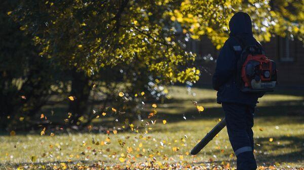 Уборка листвы в парке Царицыно в Москве