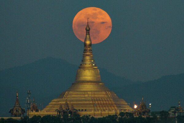 Бобровая луна над Нейпьидо
