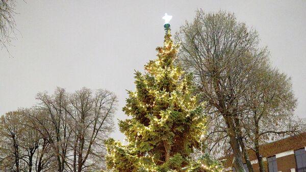 В посольстве Британии рассказали о рождественской елке в резиденции посла