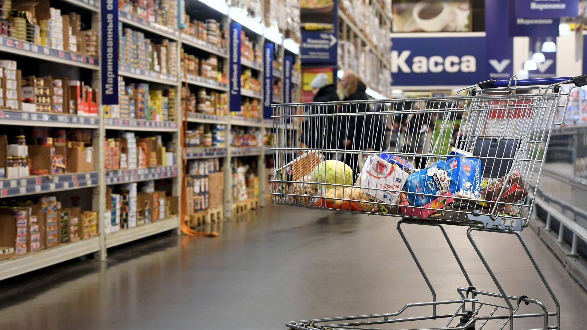 Тележка с продуктами в супермаркете - РИА Новости, 1920, 14.12.2020