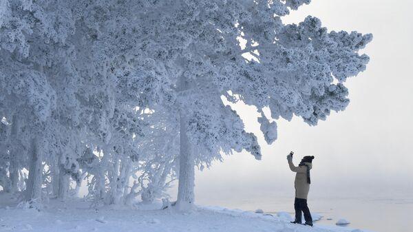 Женщина снимает на смартфон деревья в лесу на берегу Енисея в Красноярском крае в 30-градусный мороз