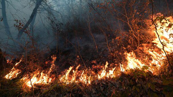 Природный пожар в Лазаревском районе около села Барановка на территории Сочинского национального парка