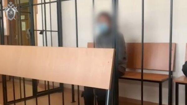 Кадры заключения под стражу хозяйки тюменского пансионата