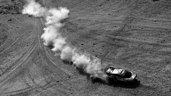 Автогонщик Себастьен Лёб (Франция)