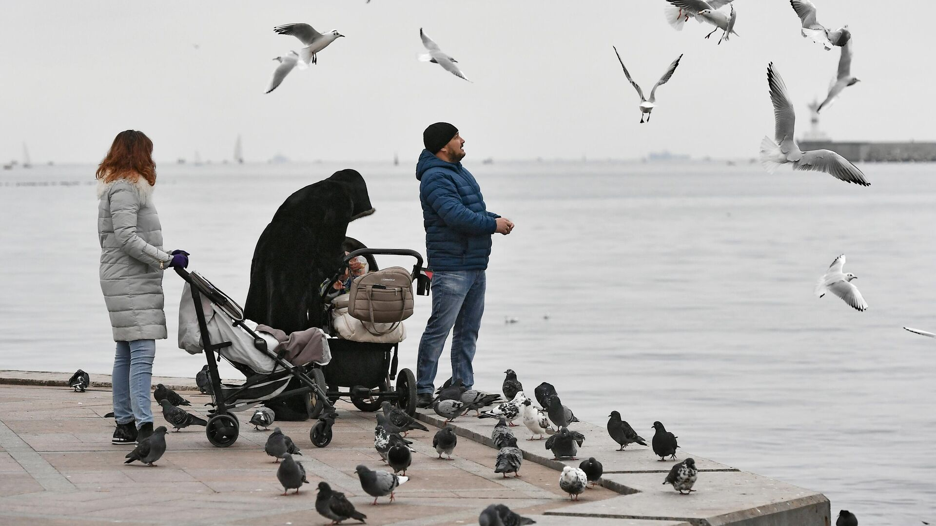 Люди кормят чаек на набережной в Севастополе - РИА Новости, 1920, 05.04.2021