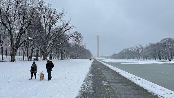 Жители гуляют с собакой на Национальной аллее в Вашингтоне