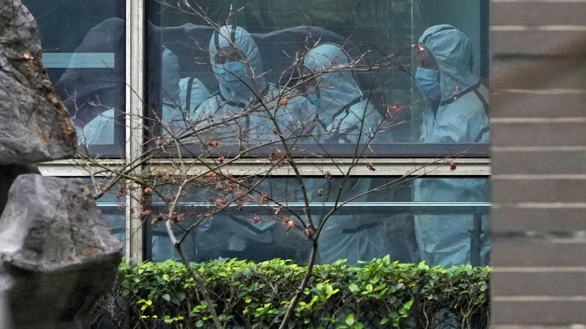 Эксперты ВОЗ во время посещения центра болезней животных в китайском городе Ухане - РИА Новости, 1920, 15.06.2021