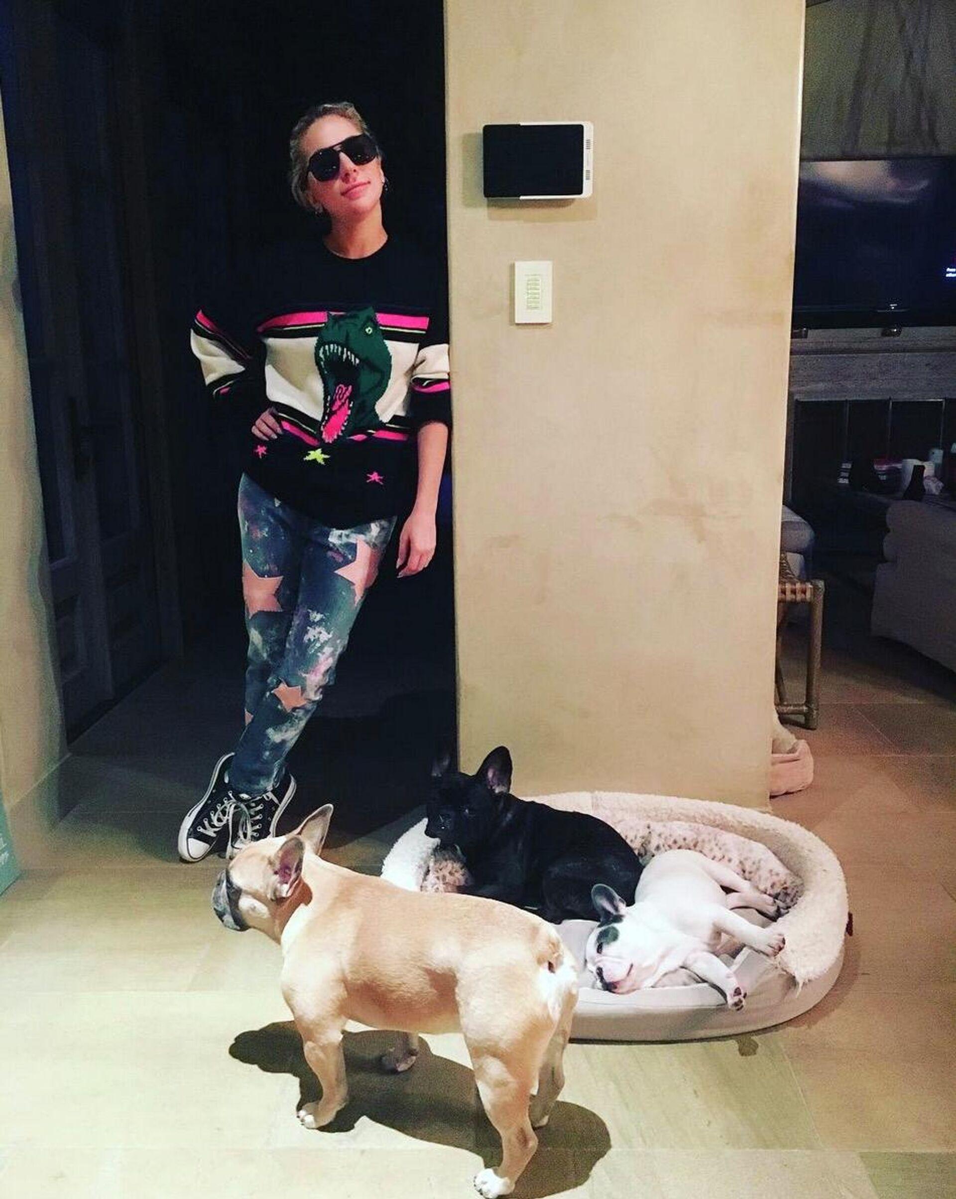 Леди Гага с собаками - РИА Новости, 1920, 26.02.2021