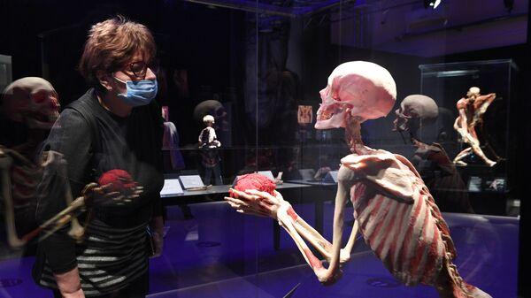 Выставка Body Worlds. Мир тела в Москве