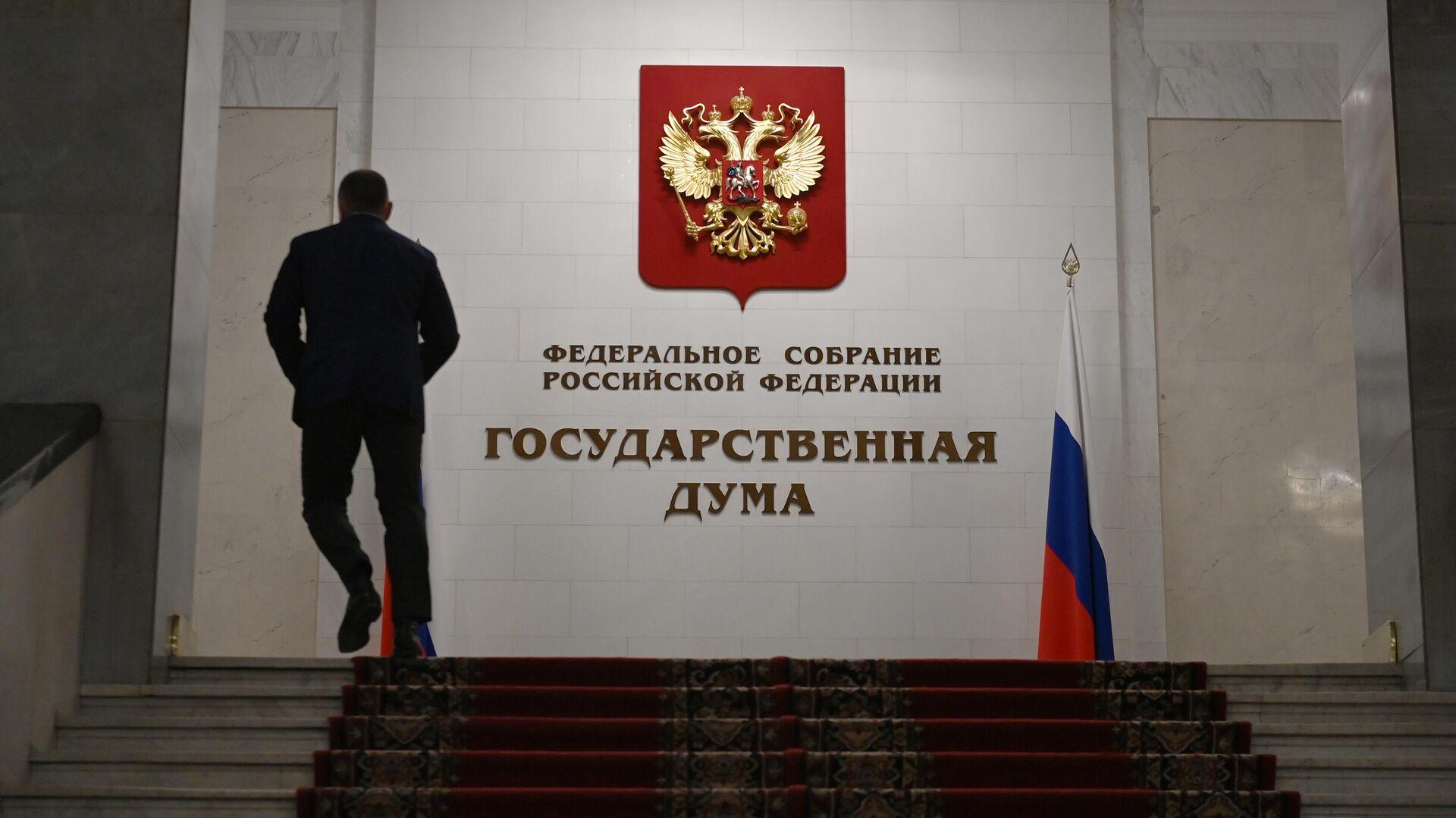 Мужчина в здании Государственной думы РФ - РИА Новости, 1920, 04.05.2021