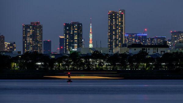 Обзорный вид на Токио