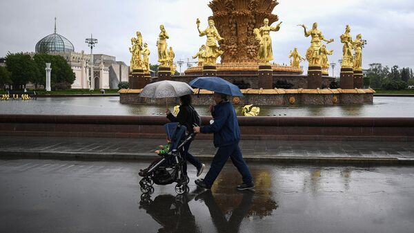 Москвичей предупредили о дождях с мокрым снегом