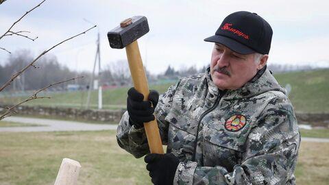 Президент Белоруссии Александр Лукашенко во время субботника