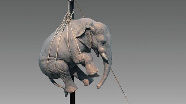 Стефано Бомбардьери. Элайджа и небольшой слон. Выставка в музее Эрарта в Петербурге
