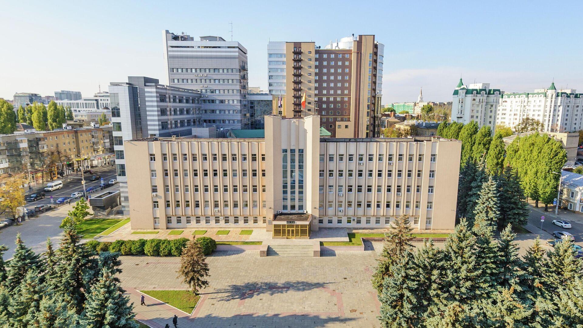 Закон о наказах избирателей усовершенствовали в Воронежской области