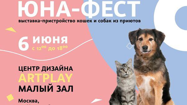Афиша выставки кошек и собак Юна-Фест