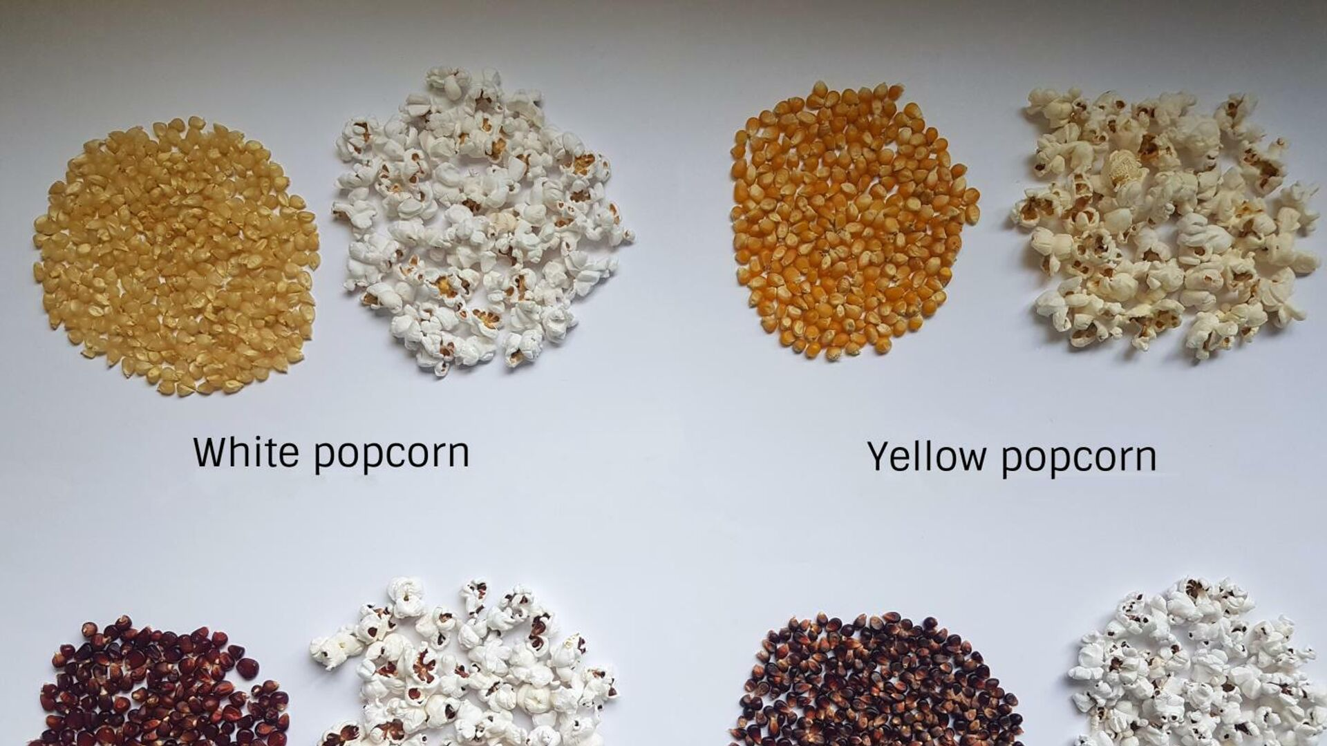 Ученые выяснили, от чего зависит качество попкорна