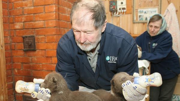 Создатель Центра спасения медвежат-сирот, заслуженный эколог России, доктор биологических наук Валентин Пажетнов